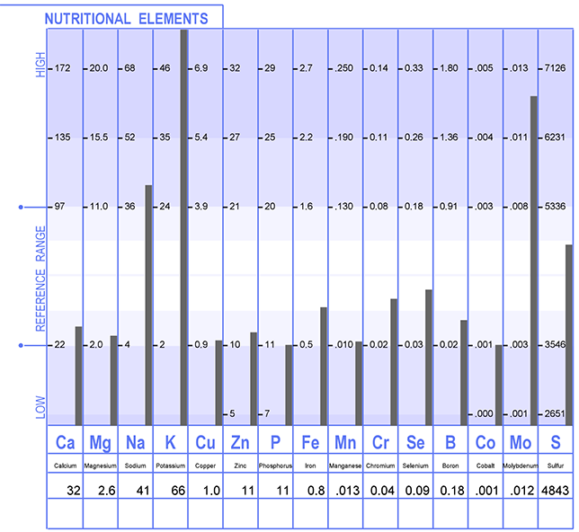 HTMA nutritional elements