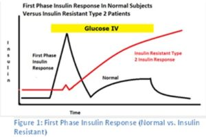 first phase insulin response normal vs in diabetes